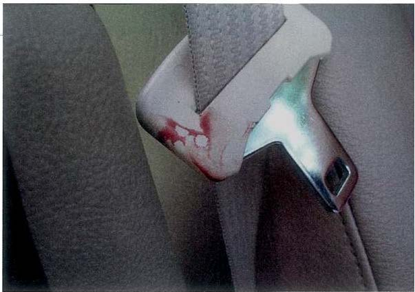 Crime Scene Reconstruction and Blood Stain Pattern Analysis: The Case of ChristopherVaughn
